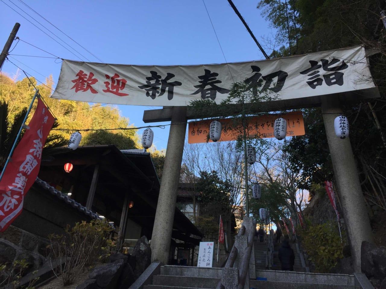 由加山2021